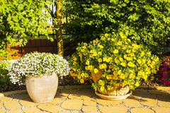 Flowerpots in the park. Royalty Free Stock Images