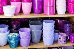 Flowerpots in a shelf in a market Royalty Free Stock Image