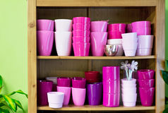 Flowerpots in a shelf in a market Royalty Free Stock Photography