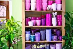 Flowerpots in a shelf in a market Royalty Free Stock Images