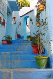 Flowerpots on the steps. Of a street in Chefchaouen, Morocco Stock Images