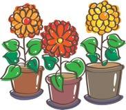 Flowerpots Stock Photo