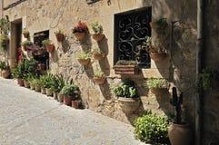 Flowerpots in Valldemosa Stock Photography