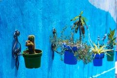Flowerpots wewnątrz chefchaouen Obrazy Stock