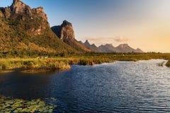 Flowers在日落,自然乡下背景的湖和山风景风景  免版税库存照片