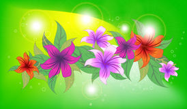 Flowers. In water color effect. Done in illustrator Stock Photo