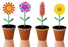 Flowers. Four  flowers in pots Royalty Free Stock Image