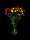 Flowers. Isolated on black background Royalty Free Stock Images
