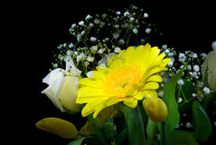 Flowers. Bucket isolated on black Stock Photos