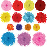 Flowers. Nice beautiful colored bright flowers Stock Photo