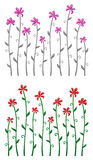 Flowers. On a white background Royalty Free Stock Images