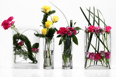 Flowers. Assortment of flowers in white Stock Photo