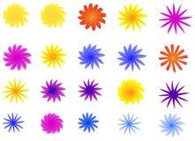 Flowers. Set of flowers  illustration Stock Image