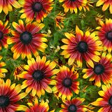 Flowers. Seamless Texture Tile from Photographic Original Stock Photo