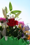 Flowers. Nice flowers for a girl Stock Images