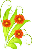 Flowers. Illustration of three decorative flowers vector illustration