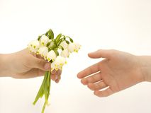 Flowers. A little boy giving flowers to a little girl Royalty Free Stock Image