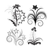 Flowers. Silhouette isolated four beautyfull flowers Royalty Free Stock Photos