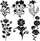 Flowers. Silhouette flowers decoration and leaves Stock Photography