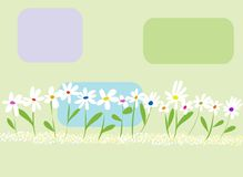 Flowers. Abstract background pastel colors and soft white flowers Stock Photography