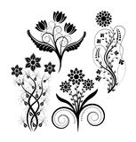 Flowers. Clip art illustration - flowers silhouette Royalty Free Stock Photos