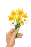 Flowers. Yellow flowers in hand on the white background Stock Photos