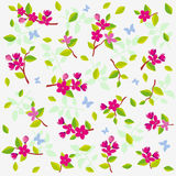 Flowers. Vector seamless background with delicate flowers Stock Photography