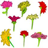 Flowers. An a vector illustration of Flowers . Files included: Illustrator 8 EPS and JPG Vector Illustration