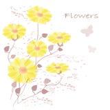 Flowers 免版税库存图片
