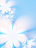 Flowers. Delicate flowers on a light blue background Royalty Free Stock Images