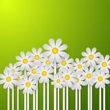 Flowers9 Ilustração Stock