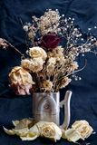 Flowers. The rose, the dried up , jug, teapot, still-life, broom Royalty Free Stock Image