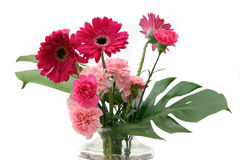Flowers. Pink Gerberas and carnations in the corner of frame royalty free stock photo