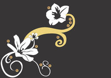 Flowers. A floral background Stock Photography