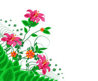 Flowers. Rose pink colour flower with green leafs in isolate background royalty free illustration