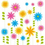 Flowers. Illustration of spring flowers in white background