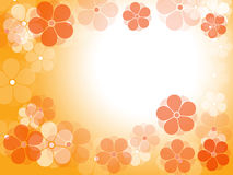 Flowers. Summer flowers background like wallpaper background Stock Photography
