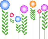 Flowers. Multi colored flowers in the white background Royalty Free Stock Image