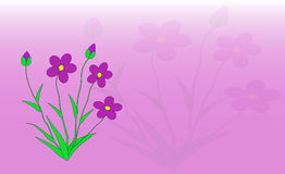 Flowers. Postcard stock illustration
