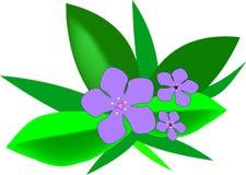 Flowers. Postcard royalty free illustration