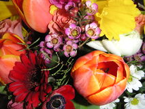 Flowers. The picture shows flowers as described by  Leo Tolstoy in his novel Anna Karenina. Some are purposely out of perspective Royalty Free Stock Photos