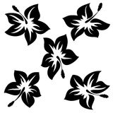 Flowers. Isolated flowers vector illustration