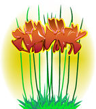 Flowers. Vector illustration shows stilized flowers Stock Photo