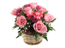 Flowers. Arrangement of pink roses in a basket and isolated on white Stock Photography