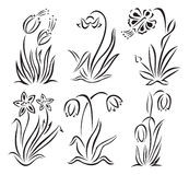 Flowers. Vector set of six different flowers Stock Images
