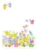 Flowers. Many flowers and some bright butterflies on white color. A watercolor painting Stock Images