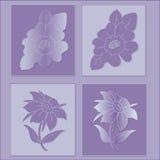 Flowers. Illustration of flower on purple background stock illustration