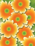 Flowers. Illustration of orange flowers on a green background Royalty Free Stock Photography
