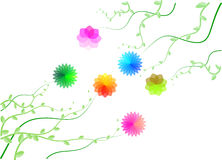 Flowers. Stylized flowers and plants on the white background Royalty Free Stock Photography