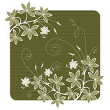 Flowers. High detailed vector floral background Royalty Free Stock Photography
